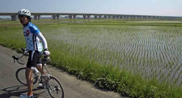 水田を突っ切るのは圏央道?