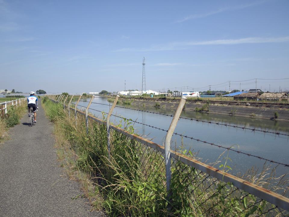 見沼代用水は星川と分流