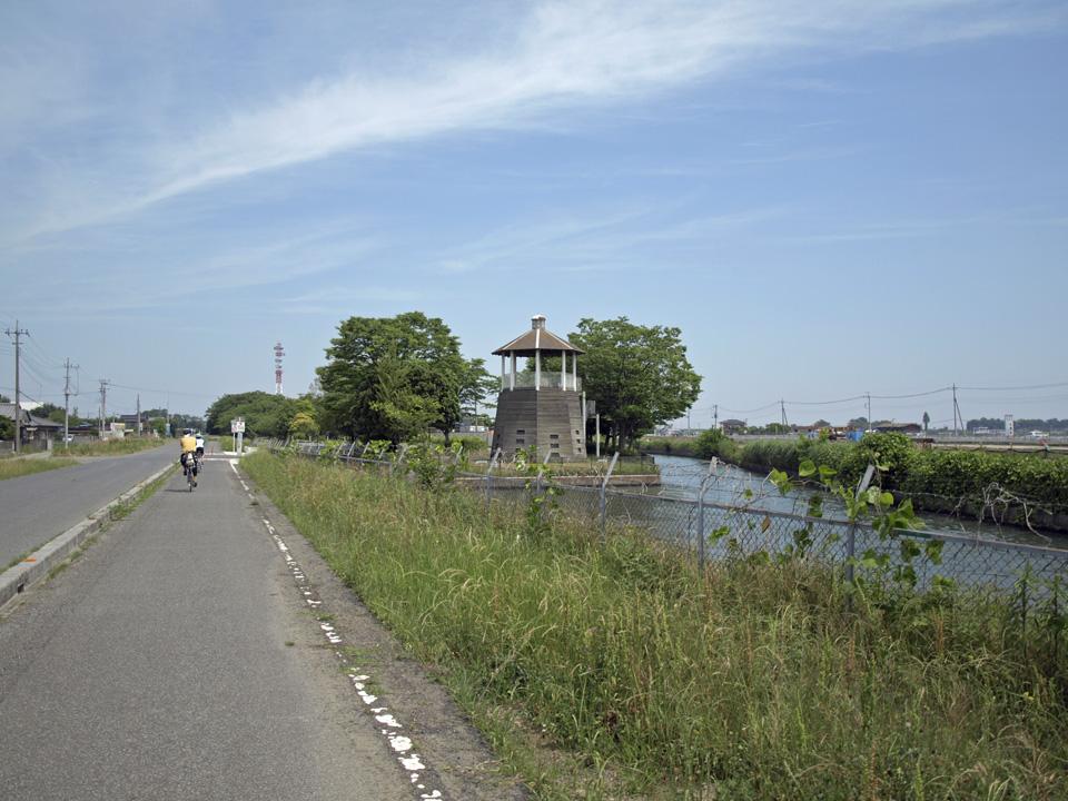 見沼元圦公園の展望台