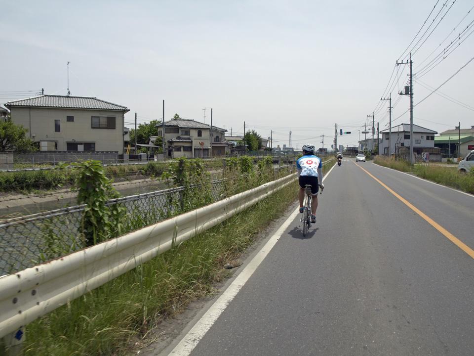 再び武蔵水路の脇へ