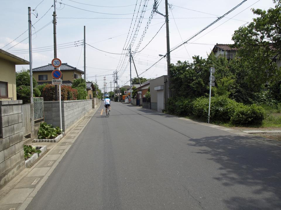 桜堤通りはやがて住宅路に