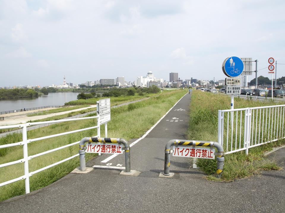 江戸川左岸のサイクリングロード