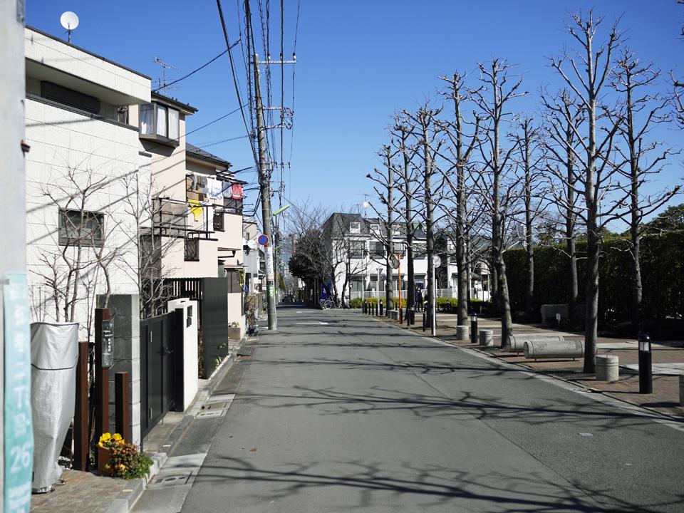 渋谷町水道みちの三軒茶屋まで続く直線