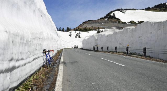 志賀草津高原ルートの雪の回廊