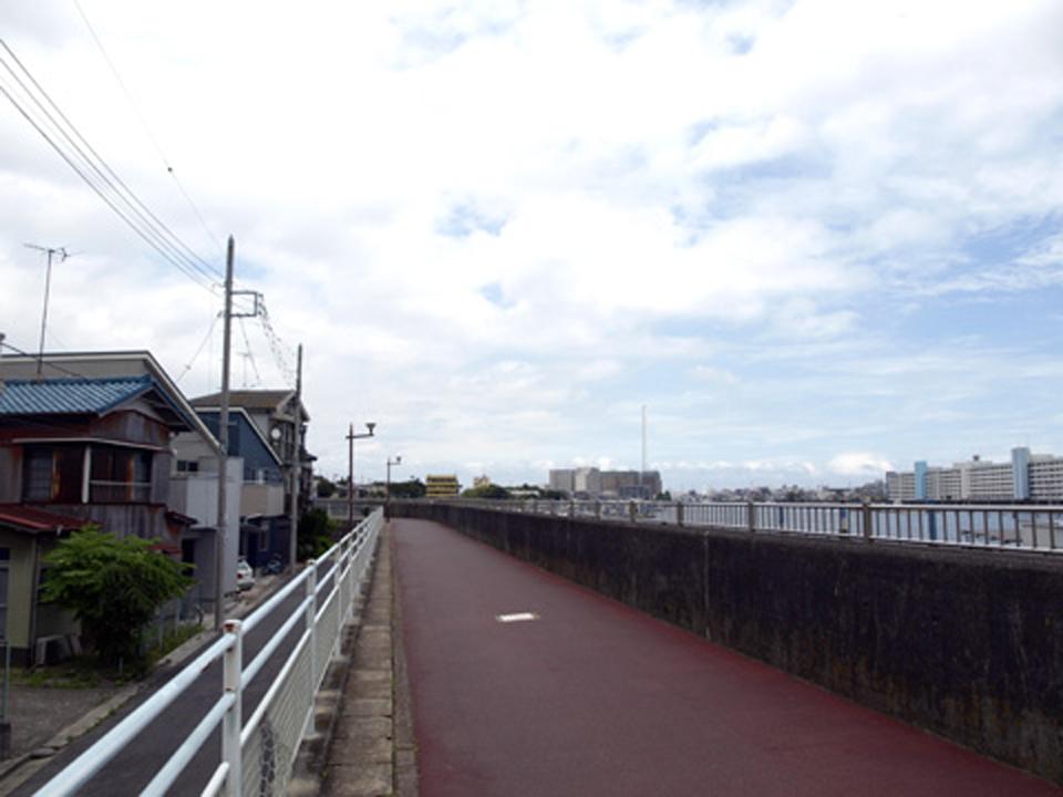 旧江戸川西岸のサイクリングロード