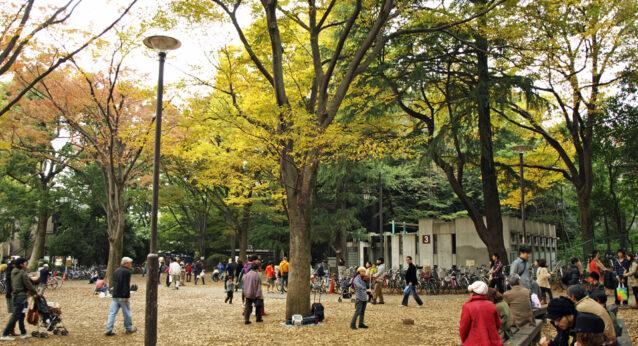 井の頭公園は秋の彩り