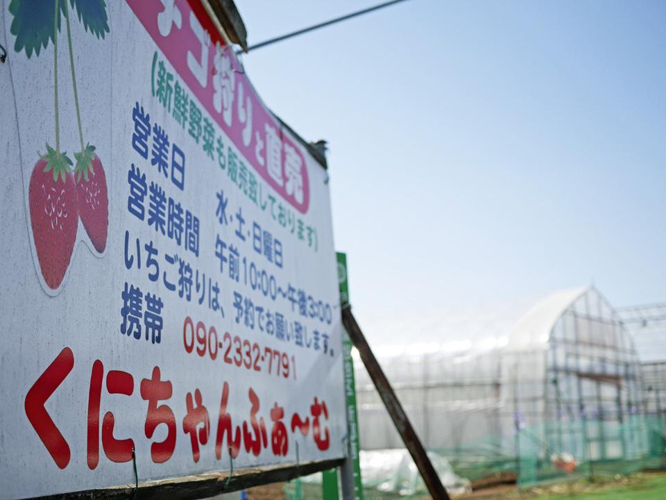 予約制イチゴ狩り農園くにちゃんふぁ〜む