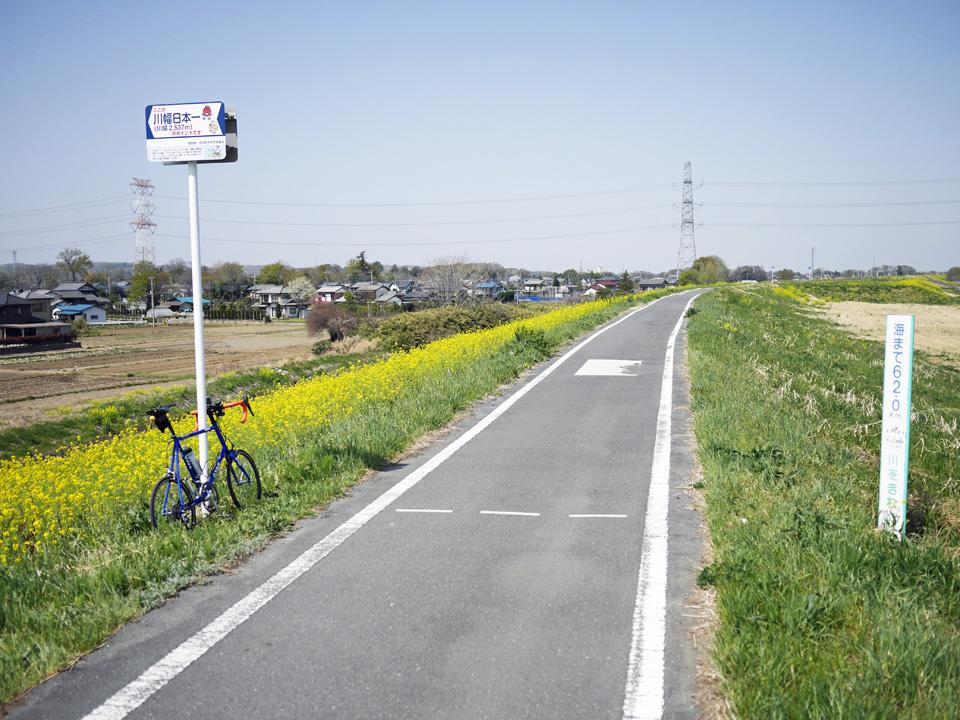 荒川CR沿いの川幅日本一の道標と GIOS FELUCA