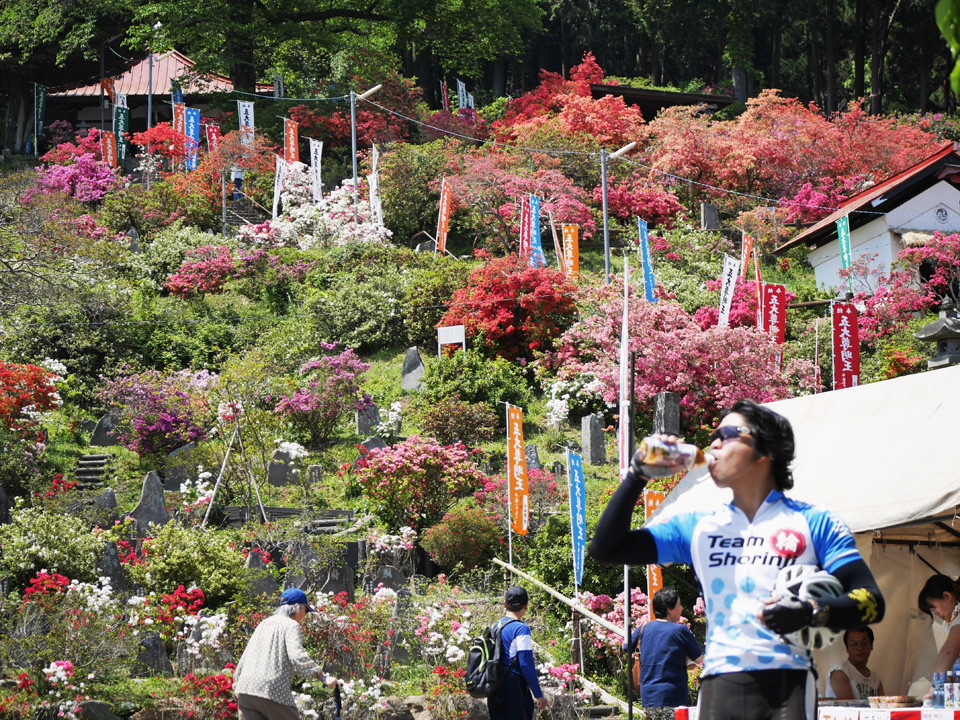 越生町の五大尊つつじ公園と給水するミニベロおやじ