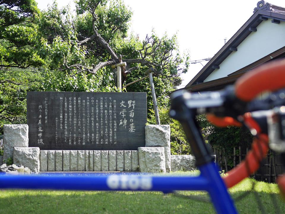 GIOS FELUCA と 野菊の墓 文学碑