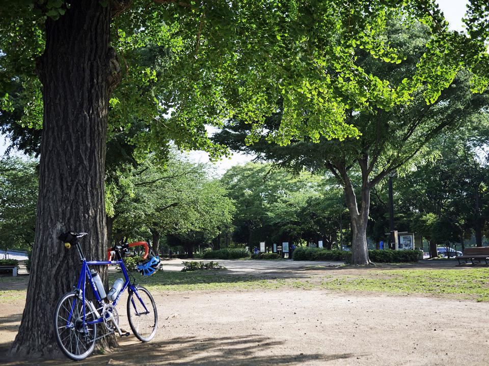 木場公園の木陰に佇む GIOS FELUCA