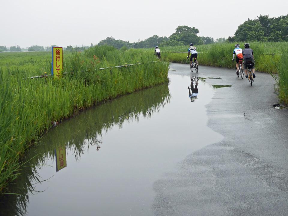 羽根倉橋の北詰に出現した巨大な水たまり