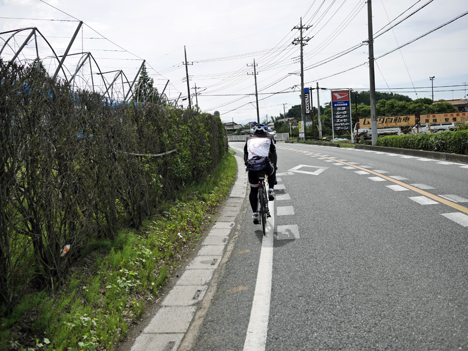埼玉県道260号を南下して狭山方面へ向かう