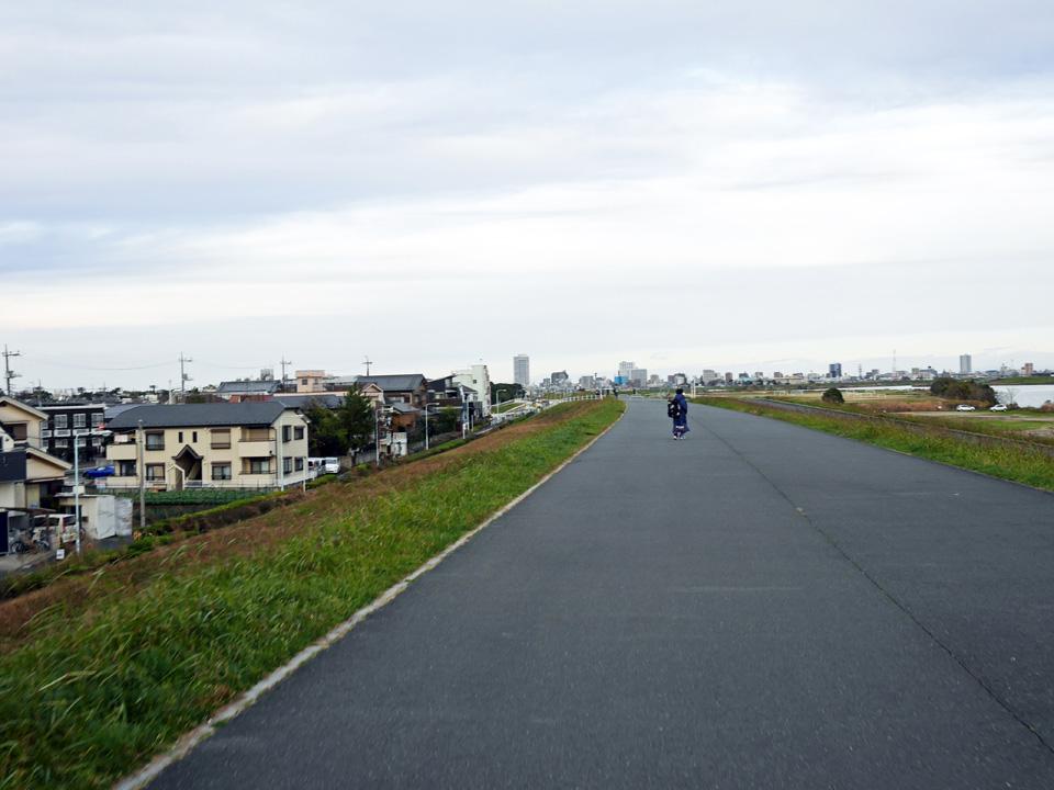 朝もやのかかる江戸川サイクリングロードを遡上
