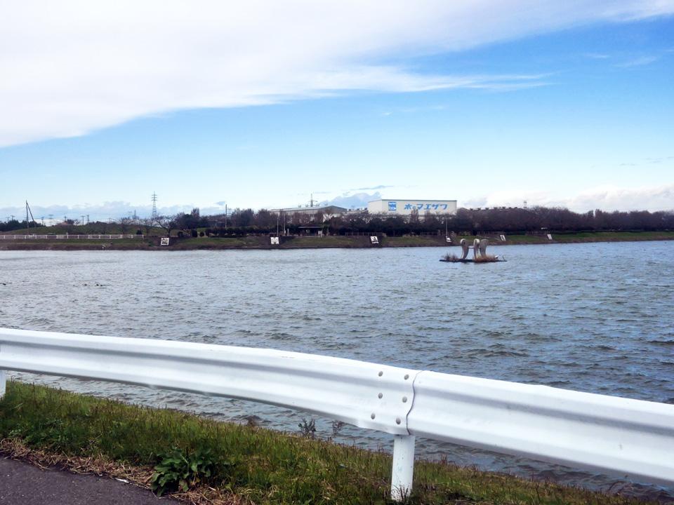 権現堂川からの寒風が吹きすさぶ権現堂公園へ到達
