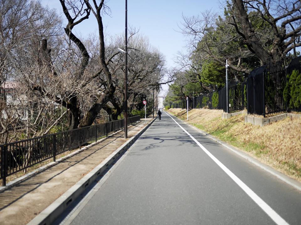 玉川上水の左岸の桜通りを進むと右手に境浄水場
