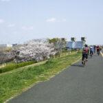 桜ライドだ✿ツール・ド・糧うどん[後編]