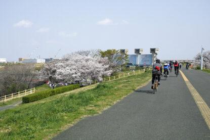 花見で賑わう岩淵水門をミニベロ集団が往く