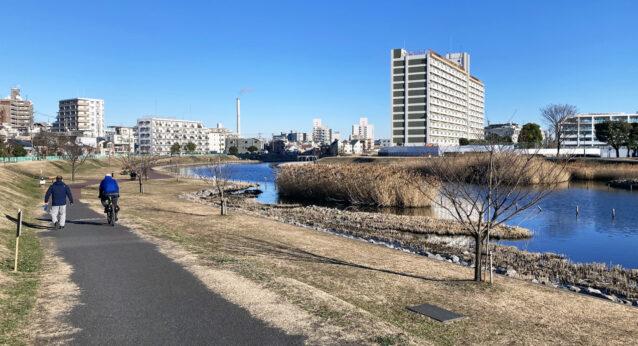 旧中川右岸の遊歩道を低速走行