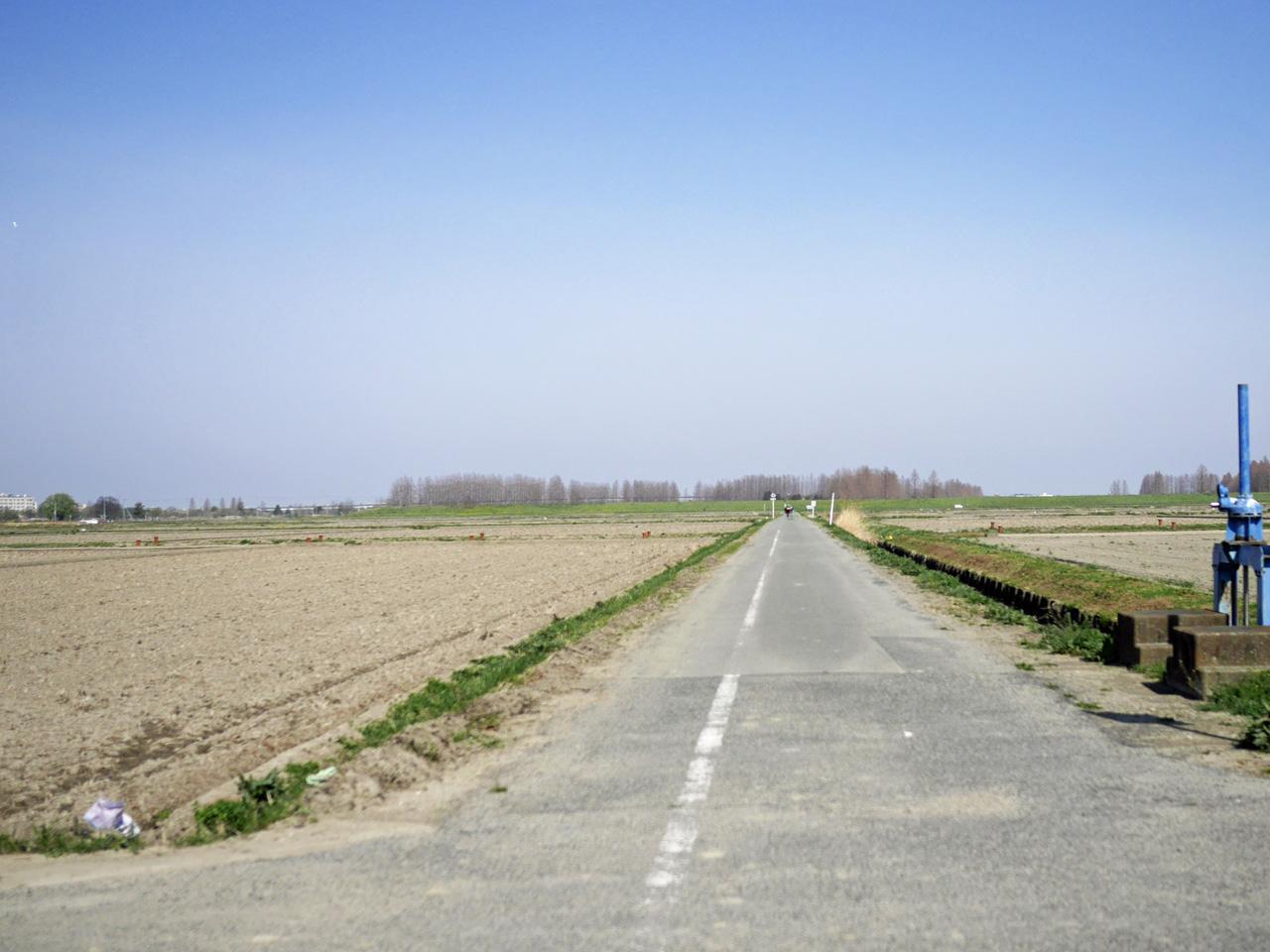 春霞が立つ荒川総合運動公園北の畑の中を進む