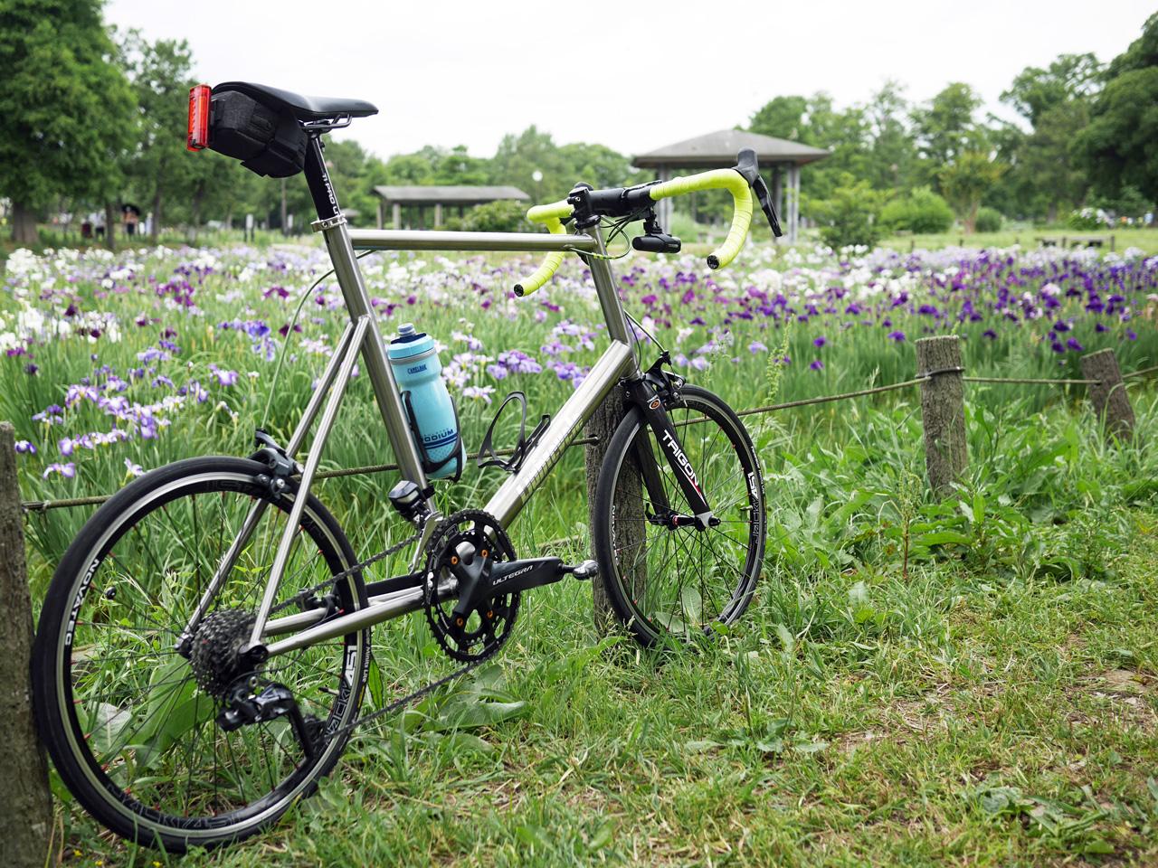 水元公園の花菖蒲とチタンミニベロ