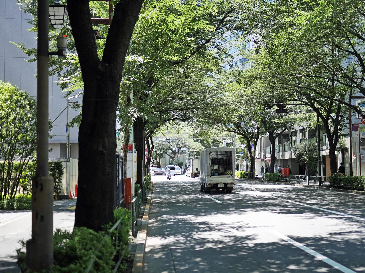 中野通りを南下